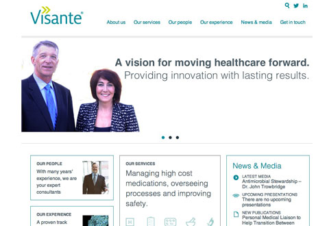 image of visante website